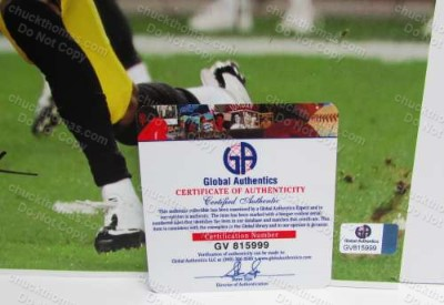 Markus Wheaton Global Certificate