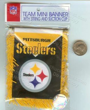 Steeler Mini Banner
